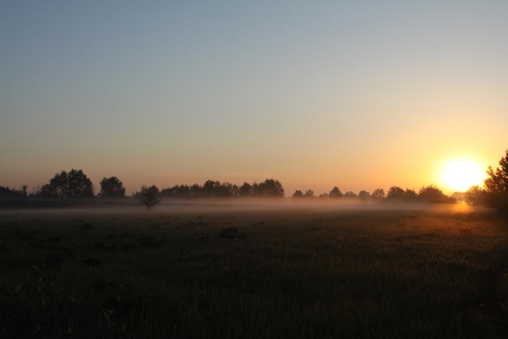 Свияжские луга на рассвте. фото М.Корепов