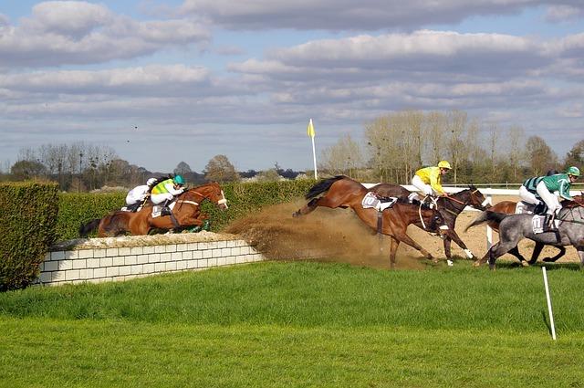 horse-racing-719641_640
